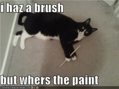 I haz a brush