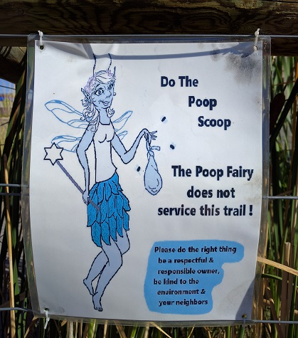 uc516_day_25_poop_fairy